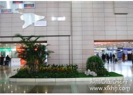郑州室内造景设计