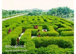 绿化工程设计