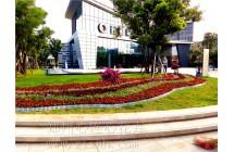 郑州花样城营销中心